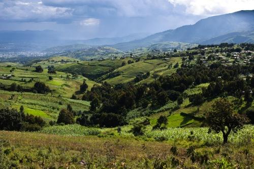 Blick hinunter nach Mbeya - Appenzeller Land, Allgäu ??